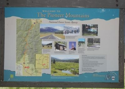 Welcome to The Pioneer Mountains National Forest Scenic Byway panel image. Click for full size.