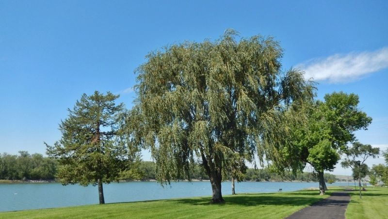 Lewis & Clark Trail & Missouri River (<i>view north from marker</i>) image. Click for full size.
