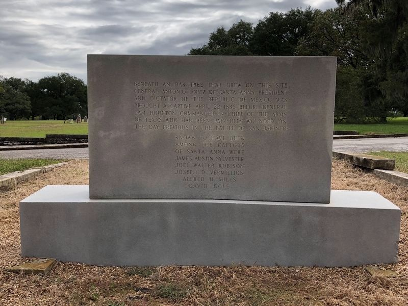 Site of Surrender of Santa Anna Marker image. Click for full size.