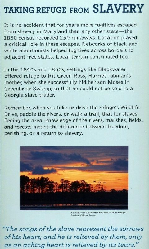 Blackwater National Wildlife Refuge-Taking Refuge from Slavery Marker image. Click for full size.