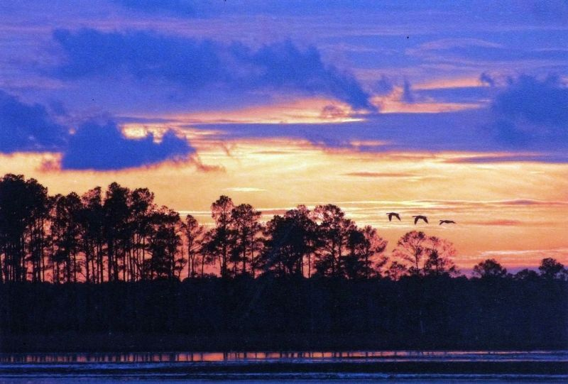 Sunset over Blackwater National Wildlife Refuge image. Click for full size.