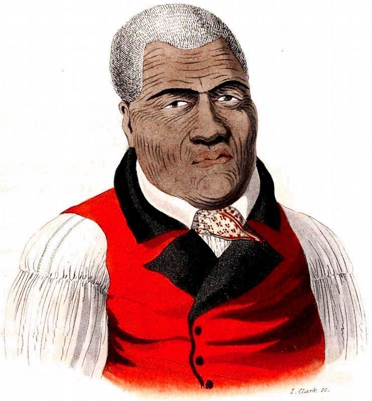 Tamaah-maah (Kamehameha I) King of the Sandwich Islands image. Click for full size.