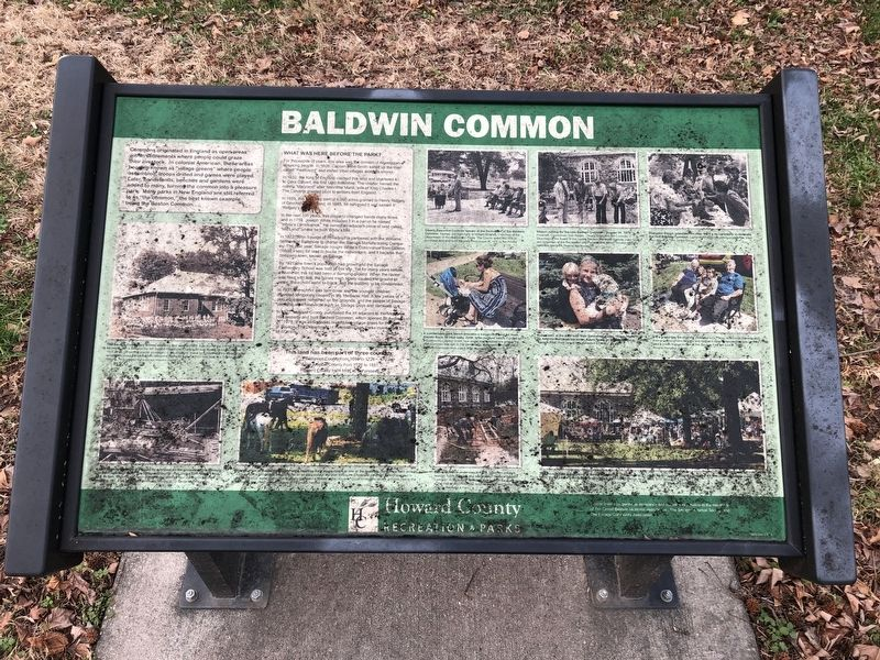 Baldwin Common Marker image. Click for full size.