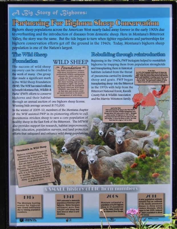Marker Panel 1: Parterning for Big Horn Sheep Conservation image. Click for full size.