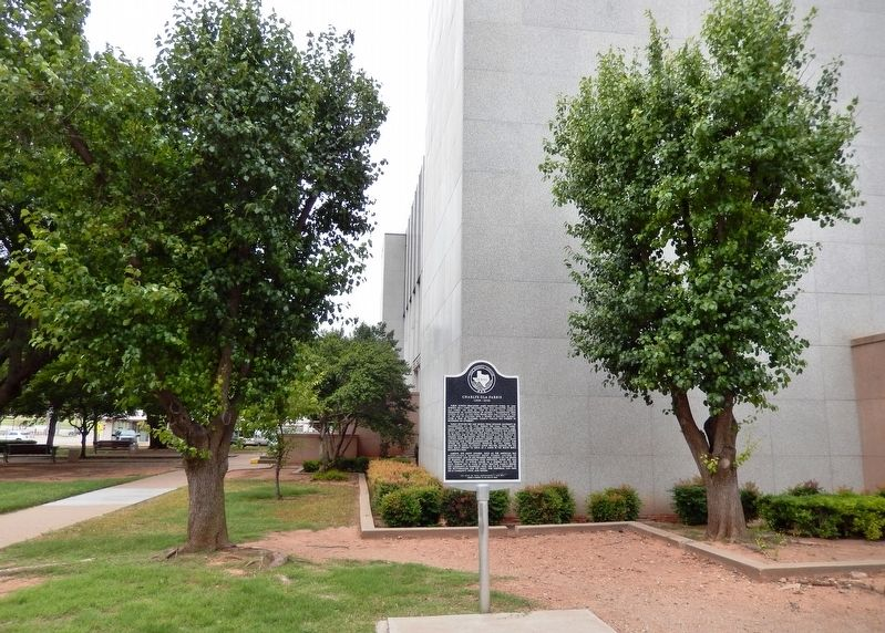 Charlye Ola Farris Marker (<i>southeast corner of Wichita County Courthouse behind marker</i>) image. Click for full size.