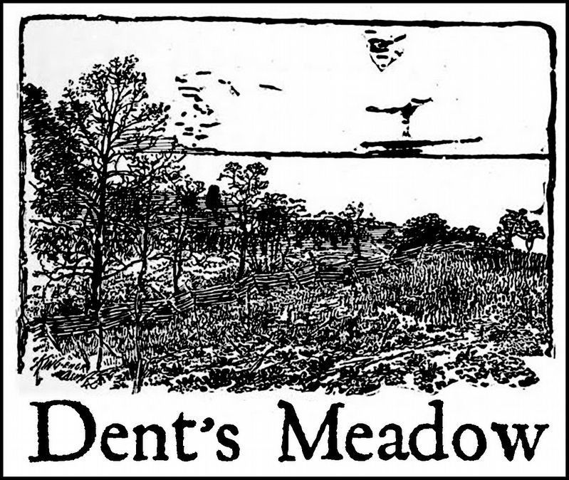 Dents Meadow image. Click for full size.