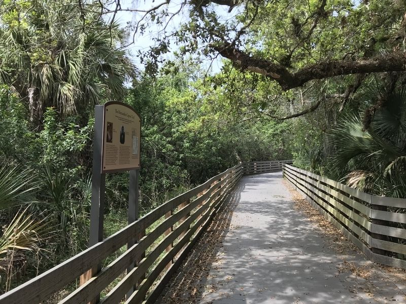 The boardwalk of the Brevard Linear Trail image. Click for full size.