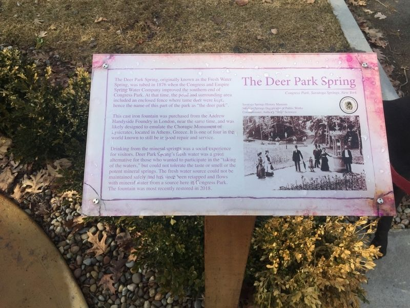 The Deer Park Spring Marker image. Click for full size.
