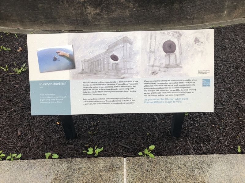 Another plaque describing <i>thinmanlittlebird</i> image. Click for full size.