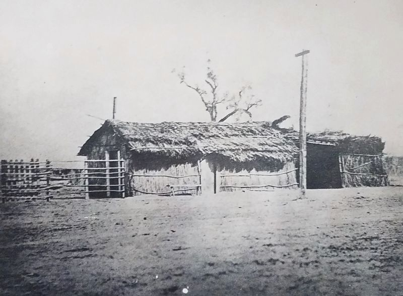 Tule-thatched home purchased by Colonel Thomas Baker in 1862. image. Click for full size.