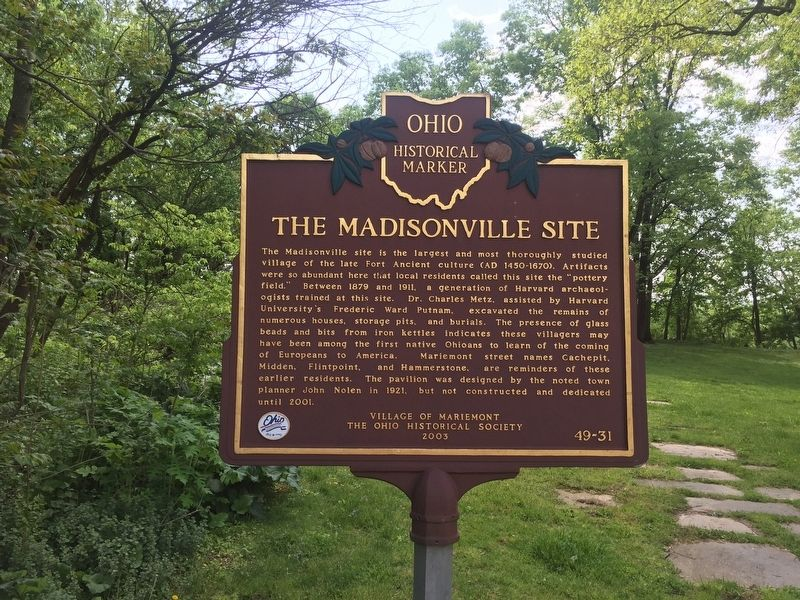 The Madisonville Site Marker image. Click for full size.