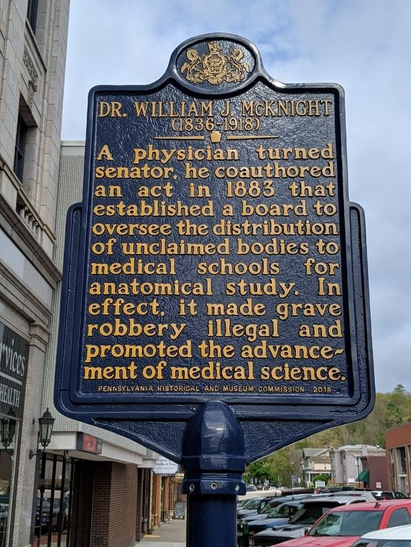 Dr. William J. McKnight Marker image. Click for full size.