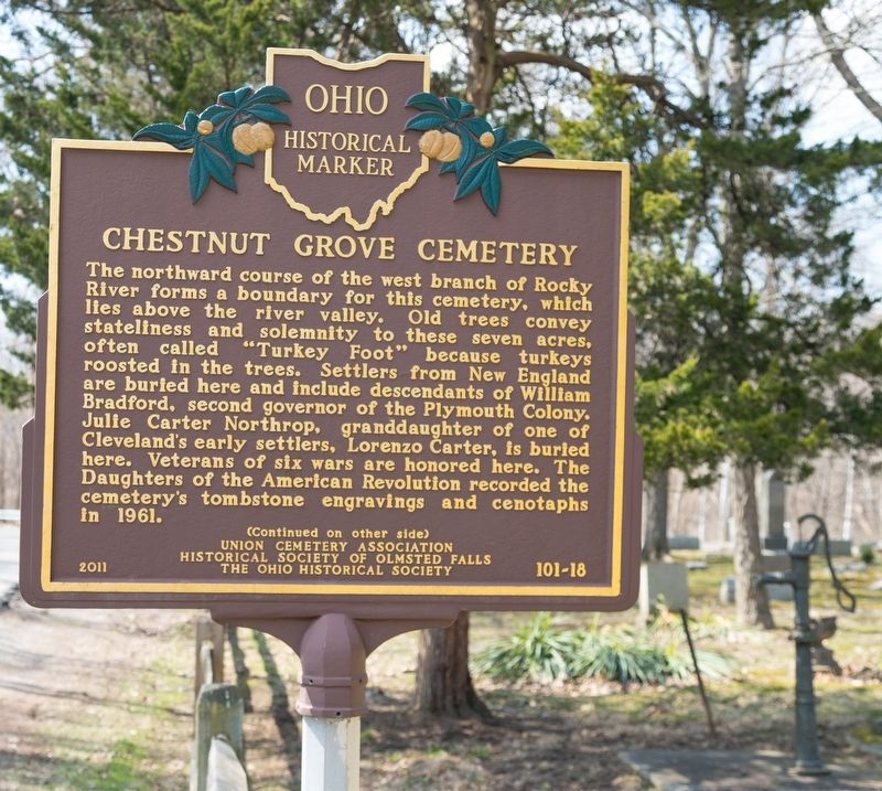 Chestnut Grove Cemetery Marker, side one image. Click for full size.