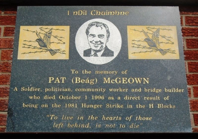Pat (Beág) McGeown Marker image. Click for full size.