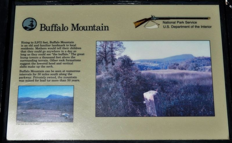 Buffalo Mountain Marker image. Click for full size.