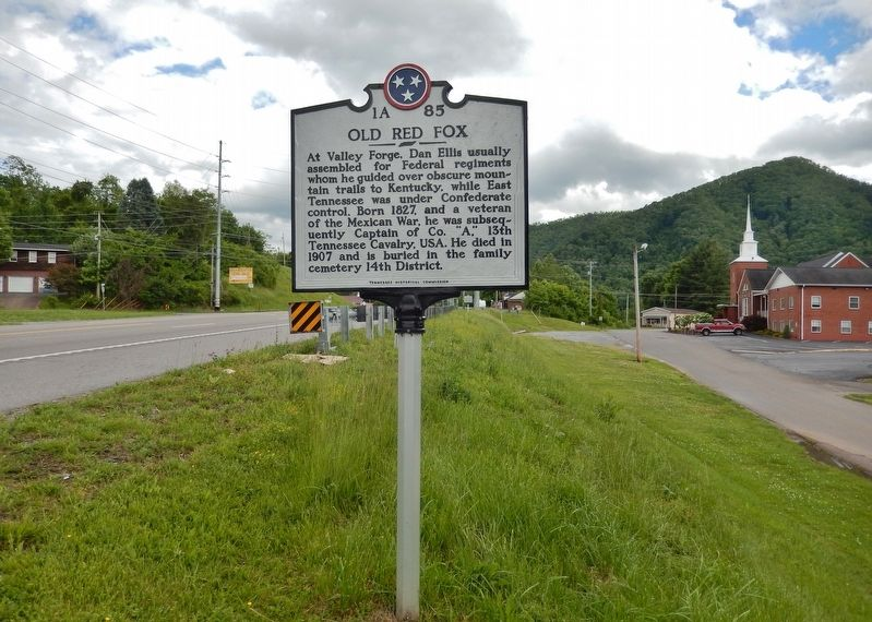 Old Red Fox Marker (<i>wide view • US Highway 19E on left</i>) image. Click for full size.
