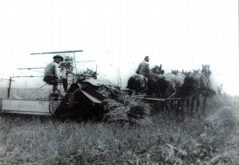Harvester image. Click for full size.