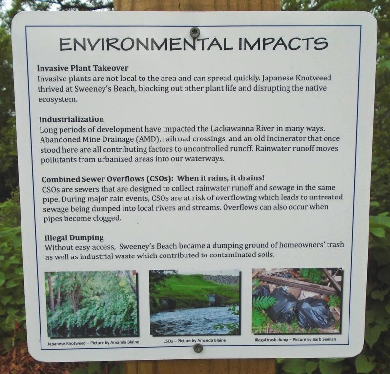 Lackawanna River Environmental Impact Marker image. Click for full size.