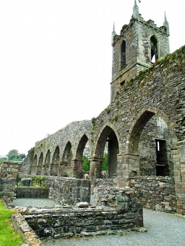Mainistir Bhealach Conglais / Baltinglass Abbey Detail image. Click for full size.
