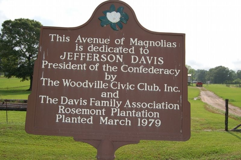 Avenue of Magnolias Marker image. Click for full size.