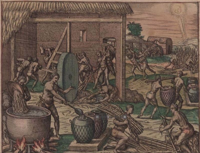 The earliest image of sugar production on Hispaniola image. Click for full size.