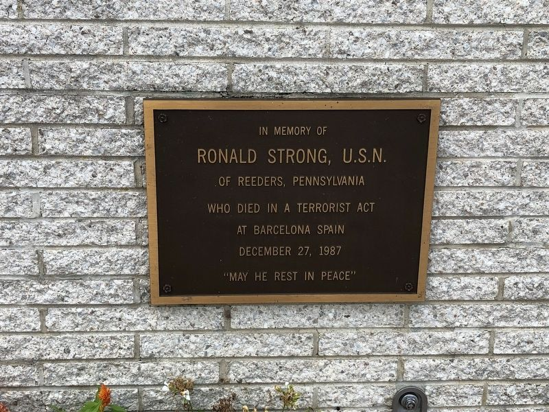 Robert Strong, U.S.N. Marker image. Click for full size.