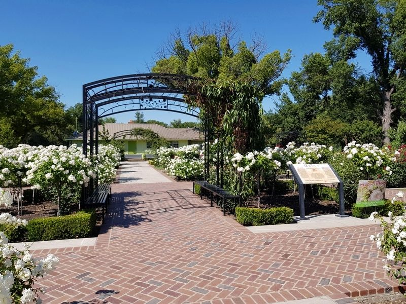 McKinley Rose Garden and Marker image. Click for full size.