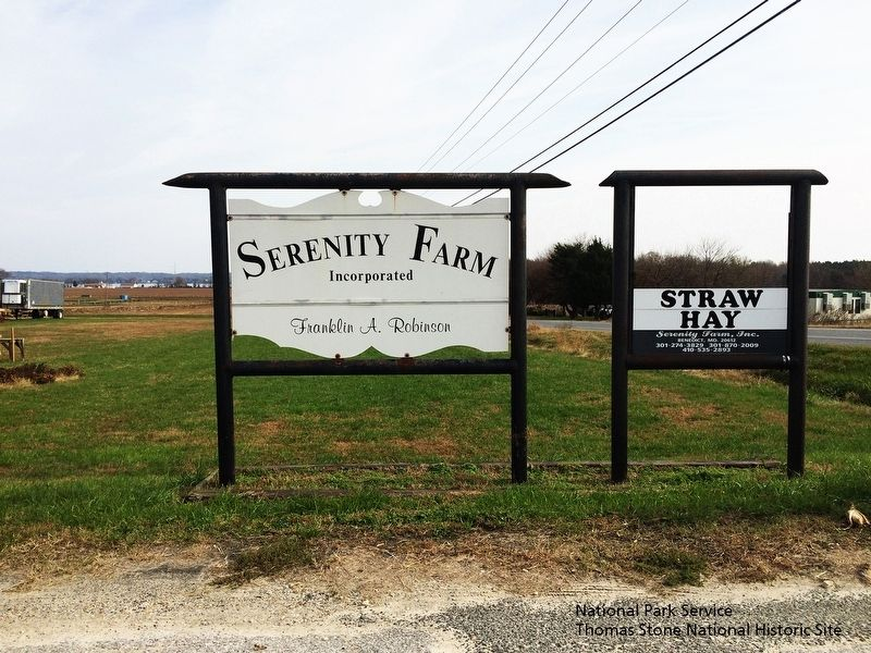 Serenity Farm Entrance Sign image. Click for full size.