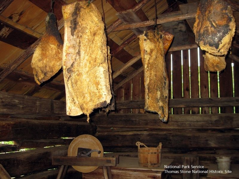 Smokehouse interior. image. Click for full size.
