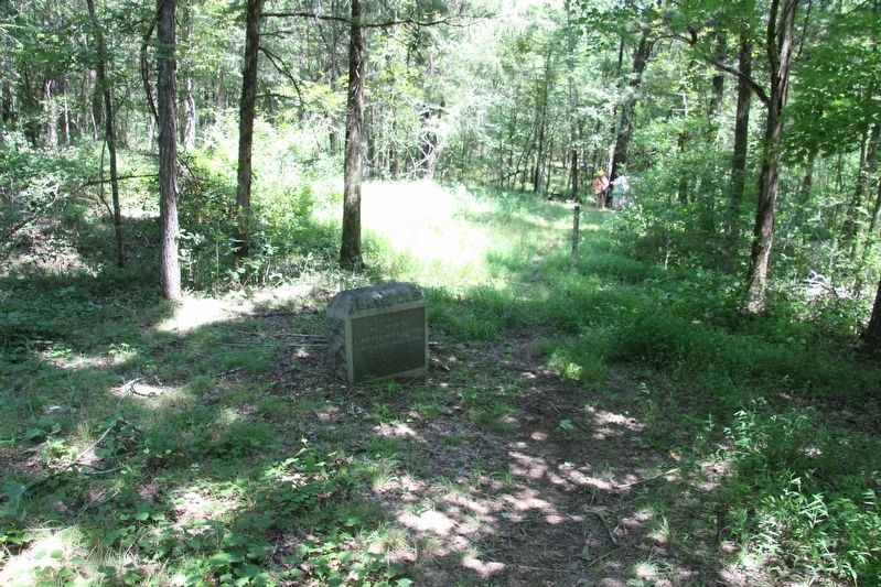24th Illinois Infantry Marker image. Click for full size.
