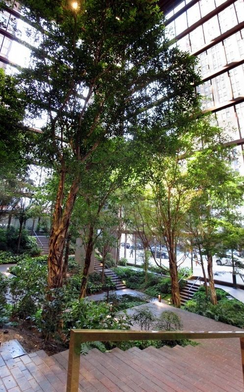 The Ford Foundation Building atrium image. Click for full size.