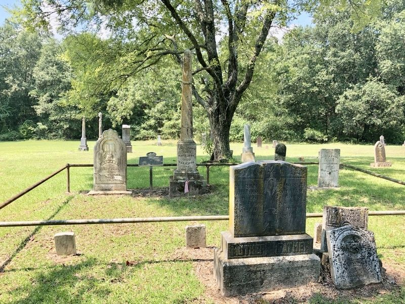 Area photo of the Emory Rains gravesite and historical marker. image. Click for full size.