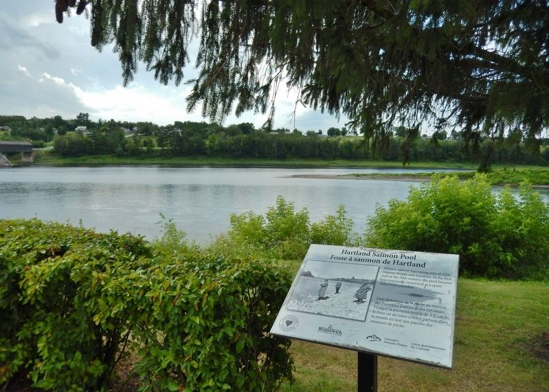 Hartland Salmon Pool Marker<br>(<i>wide view • Saint John River in background</i>) image, Touch for more information