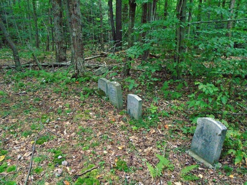 Burial Grounds Grave Markers image. Click for full size.