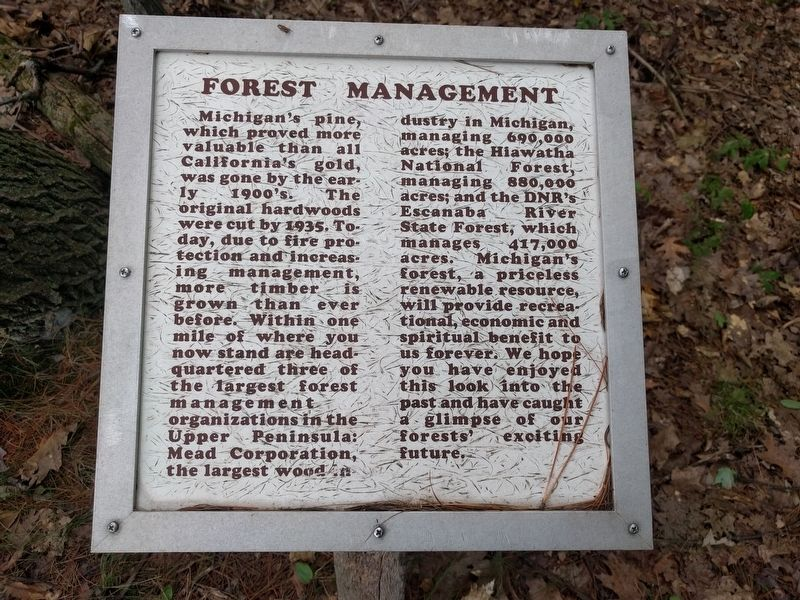 Forest Management Marker image. Click for full size.