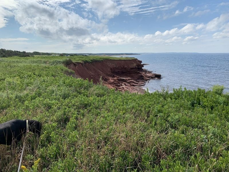 PEI Coast on the Gulf of St. Lawrence image. Click for full size.