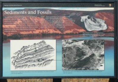 Sediments and Fossils Marker image. Click for full size.