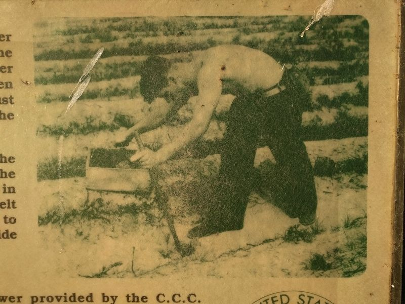 Civilian Conservation Corps Marker - image image. Click for full size.