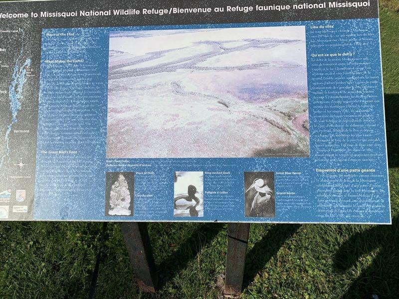Missisquoi Wildlife Refuge image. Click for full size.