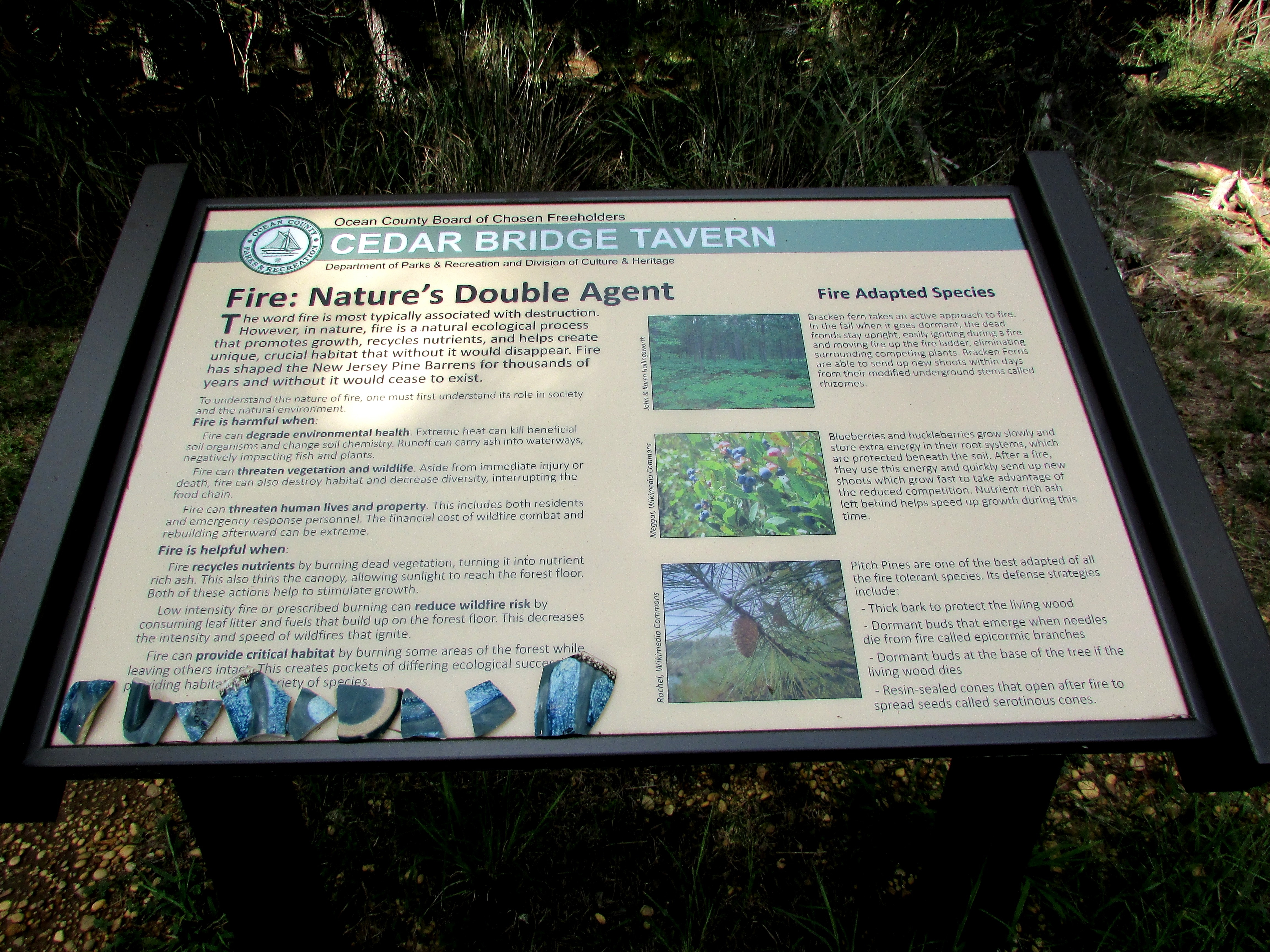 Fire: Nature's Double Agent Marker