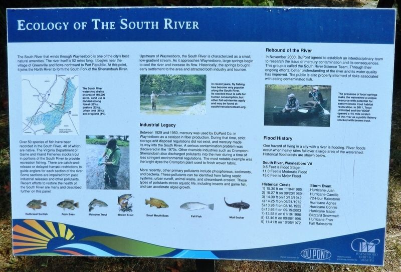 Ecology of the South River Marker image. Click for full size.
