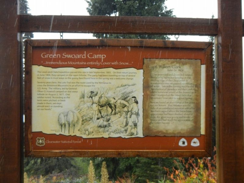 Green Swoard Camp Marker image. Click for full size.