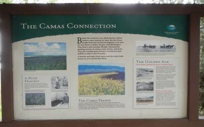 The Camas Connection Marker image. Click for full size.