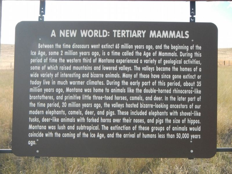 A New World: Tertiary Mammals Marker image. Click for full size.