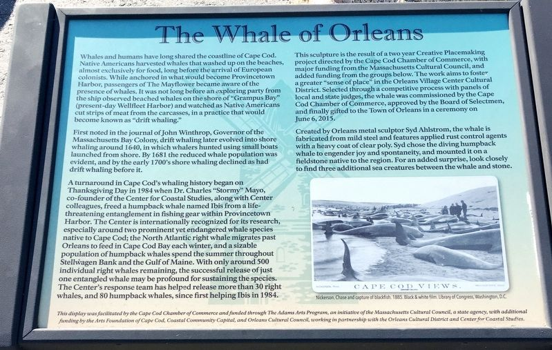 The Whale of Orleans Marker image. Click for full size.