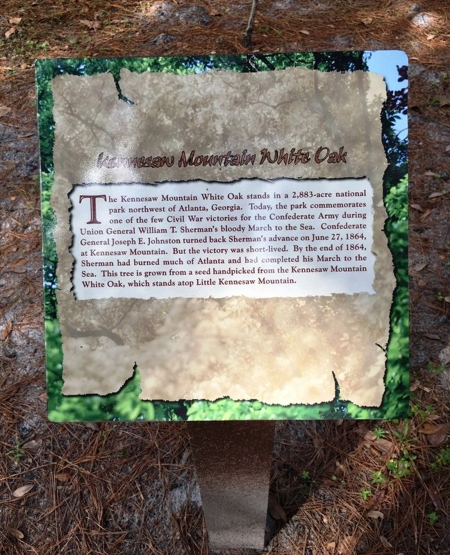 Kennesaw Mountain White Oak Marker image. Click for full size.