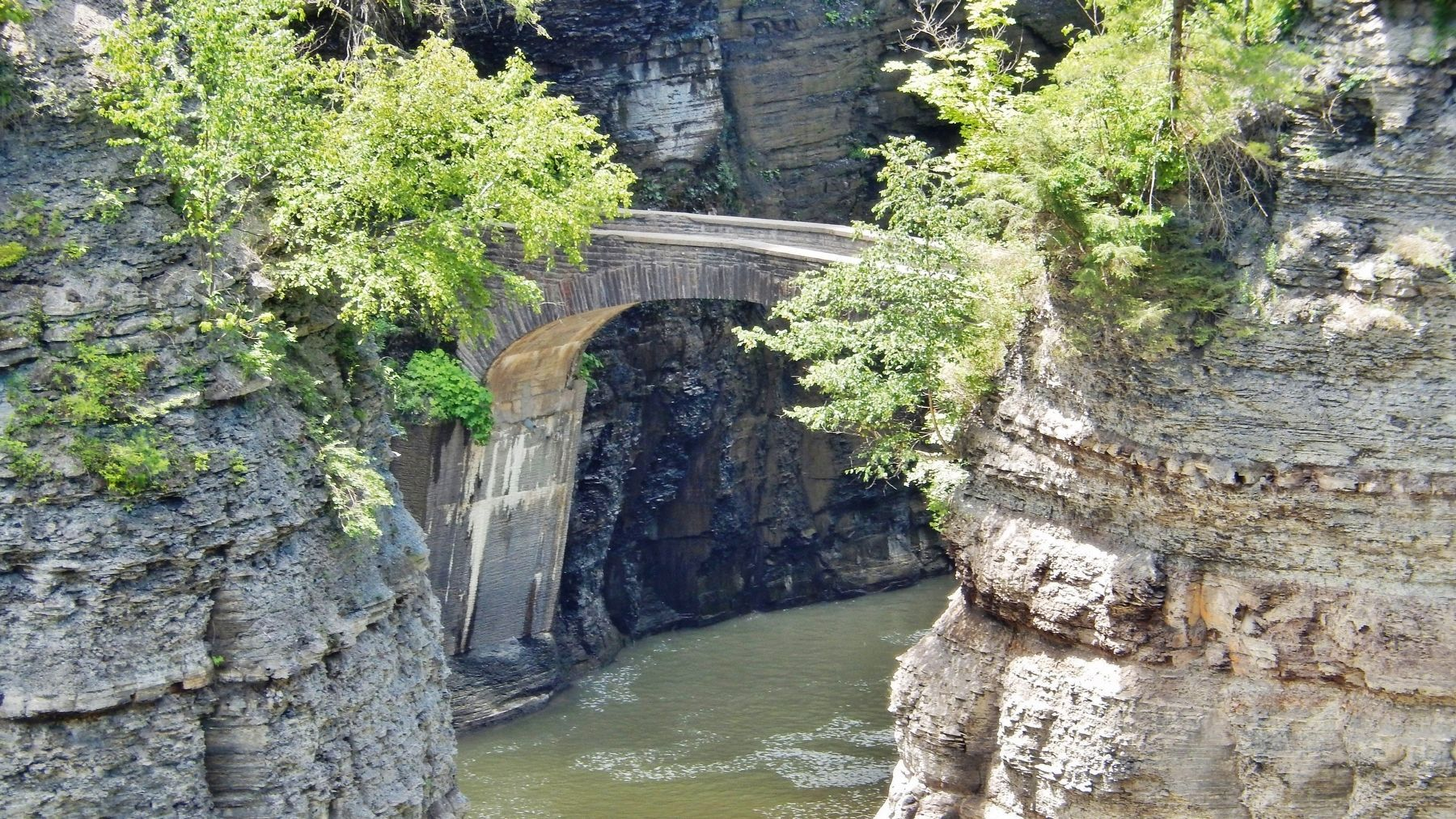 Lower Falls Footbridge (<i>view from Genesee River Gorge Trail</i>) image. Click for full size.