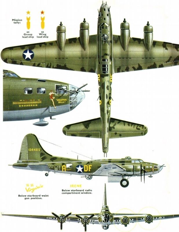 <i>Memphis Belle</i> camouflage pattern image. Click for full size.