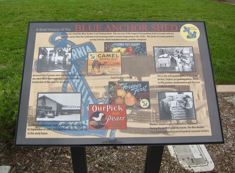 A Brief History of the Blue Anchor Shed Marker image. Click for full size.