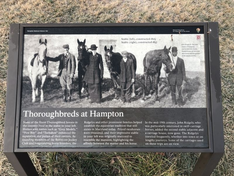 Thoroughbreds at Hampton Marker image. Click for full size.